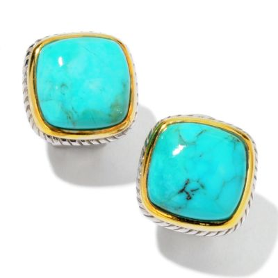 103-955 - Gem Insider 12x12mm Turquoise Framed Earrings w/ Omega Backs