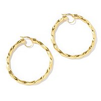 "IDS SILICORO (TM) - EAR ""MAGICA"" TWISTED HOOP"