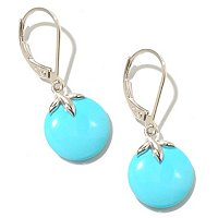 SS ROUND SLEEPING BEAUTY TURQ LEVERBACK EARRINGS