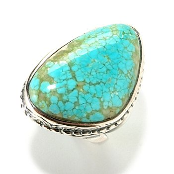 126-816 - Gem Insider Sterling Silver 18 x 27mm Trillion Shaped Turquoise Ring