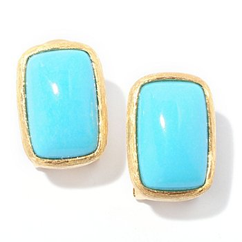127-078 - Michelle Albala 14 x 9mm Sleeping Beauty Turquoise Brushed Earrings