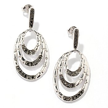 130-569 - Diamond Treasures Sterling Silver 0.25ctw Black Diamond Oval Loop Earrings