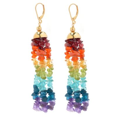 "131-016 - NYC II 3.25"" Multi Gemstone Exotic Rainbow Chip Bead Dangle Earrings"