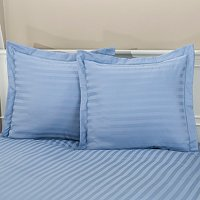 Charter Club 500TC Damask Stripe Euro Sham Pair