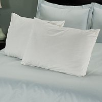 North Shore Linens Organic Cotton Pillow