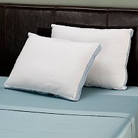 Set of 2 Clean & Fresh Down Alternative Pillows