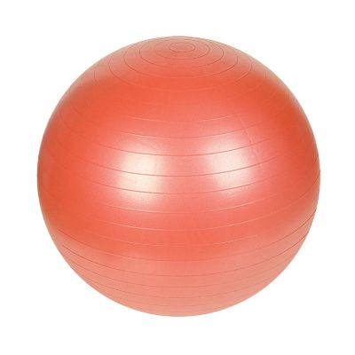415-442 - Sunny Health and Fitness 55CM Anti-Burst Gym Ball