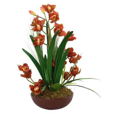 417-168 - Laura Ashley Faux Lifelike Orchid Arrangement