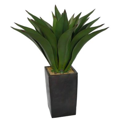 417-176 - Laura Ashley Faux Realistic Giant Aloe Plant