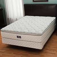 Serta Perfect Sleeper Fortify Pillowtop Mattress Set - Queen