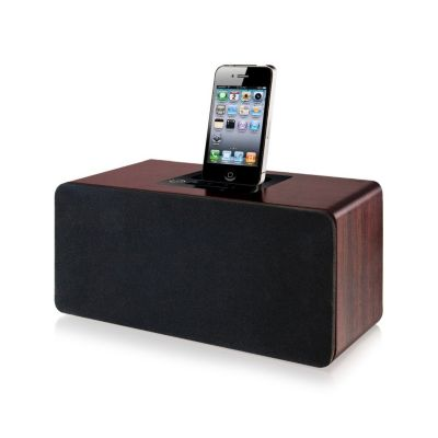 429-699 - iLive iPod / iPhone Speaker System