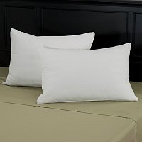 North Shore Linens Set of 2 Compartment Pillows with Dobby Pillow Protectors