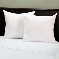 Set of 2 Euro Pillows