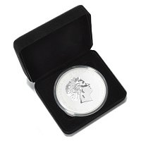 2012 PERTH MINT DRAGON 5OZ BULLION COIN