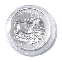 2013 1 OZ Silver Canadian Antelope BU (Display Box)