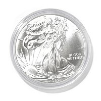 2013 Silver Eagle Brilliant Uncirculated
