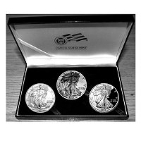 2006 20th Anniversary Silver American Eagle Set