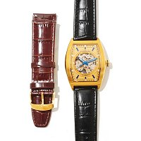 Stuhrling Original Men's Millennia Visionaire Automatic Strap Watch