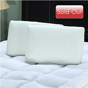 425-219 - sensorPEDIC™ Comfort Ventilated Memory Foam Pillow Pair